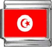 TUNISIA TUNISIAN FLAG Photo Italian Charm 9mm - 1 x PC179 Single Bracelet Link