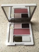 CLINIQUE eye shadow duo Morning Java & Pink Chocolate with Smouldering Plum blush