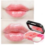 YABINA Pro 6 Colours Make Up Lip Gloss Lipstick Cream Palette Set Beauty
