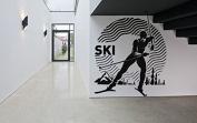 Wall Decal Sticker Bedroom ski winter sport mountains boys teenager room 218b
