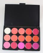 EFINNY Professional 15 Colour Beauty Makeup Palette Cosmetic Gloss Lipstick Lip Set A02