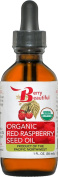 Red Raspberry Seed Oil - USDA Certified Organic - 1 fl oz (30 ml) - Cold-Pressed in the USA