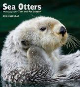 Sea Otters 2018 Wall Calendar