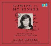 Coming to My Senses [Audio]