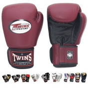 Twins Special Boxing Gloves Hook and loop Dual Colour