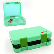 Bento Box 4 Section Tray with Removable, Lunch Box For Kids & Adults, Tritan Safe Food Materials , Easy To Clean, Lunch Storage Container 2 Buckles, Salad Box Of Green