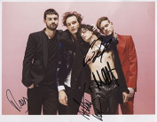 The 1975 (Band) Matthew Healy FULLY SIGNED Photo 1st Generation PRINT Ltd 150 + Certificate