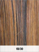 LORD & CLIFF EVITA SIX PIECE STRAIGHT HUMAN HAIR CLIP IN EXTENSION 36cm 1B/30