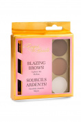 Blazing Brows Eyebrow Kit