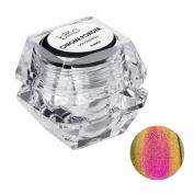 BMC Colourful Extra Fine Chrome Mirror Nail Art Loose Powders - Sorceress