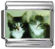 KITTENS BLACK WHITE Photo Italian Charm 9mm Link - 1 x CA078 Single Bracelet Link