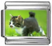 KITTEN GREY WHITE Photo Italian Charm 9mm Link - 1 x CA109 Single Bracelet Link