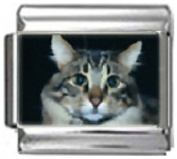 CAT GREY WHITE Photo Italian Charm 9mm Link - 1 x CA110 Single Bracelet Link
