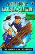 Secret Agents Jack and Max Stalwart: Book 2