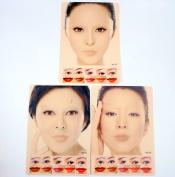 WellieSTR 3Pcs Colourful Tattoo Permanent Makeup Lip Eyebrow Full Face Practise Fake Skin
