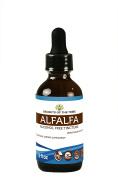 Secrets of the Tribe Alfalfa Alcohol FREE Liquid Extract, Organic Alfalfa (Medicago Sativa) Dried Leaf