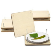 BestNest Nature Presses, 23cm x 23cm , Set of 3
