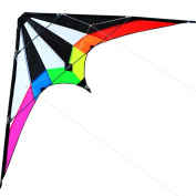 Hengda Kite NEW 180cm /120cm Stunt Kite Outdoor Sport Fun Toys Dual Line Sport Kite - Includes Kite Line and Bag