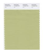 PANTONE SMART 14-0223X Colour Swatch Card, Nile