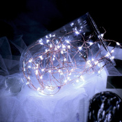 Topfashion+ Battery Powered Operated Led String Starry Light Copper Wire Decorative Centrepiece Lights 60 Leds Cool White Firefly Mason Jars Lighting 6m 20ft set of 1