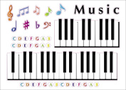 """Kids Learning Piano Notes & Keys Artwork Room Decor Wall Sticker Decal15""""W X 60cm H (1 piece)"""