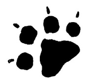 Art Stamps Tiny Paw Stamp