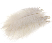 10 x Arts Crafts Ostrich Feathers Fluffy 25cm - 30cm Long White