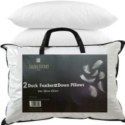 2x Luxury Duck Feather and Down Pillow, Comfortable Extra Filling Hotel Quality by Sabar