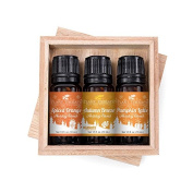 Plant Therapy Fall Holiday Blend Synergy Gift Set. Pumpkin Latte, Spiced Orange, and Autumn Breeze. 100% Pure, Undiluted, Therapeutic Grade Essential Oils. 10 ml (1/3 oz) each.