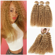 Tony Beauty Hair Strawberry Blonde Human Hair Weaves Kinky Curly 3 Bundles Lot Brazilian Honey Blonde Virgin Human Hair Wefts Extensions Pure #27 Colour 25cm - 80cm In Stock