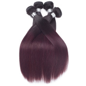 REINE Two Toned Brazilian Straight Hair Weave 4pcs Burgundy Red Wine Straight Brazilian Hair Weave Bunldes T1B/99J Ombre Human Hair