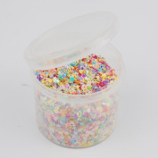 NWFashion Women's Fany Colourful Nail/Make up/Hair Style/Party Decoration Glitter Powder