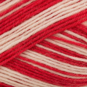 Regia 4 Ply Colour 100g - Rot Weiss