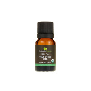 ActuallyOrganic 100% Pure and Natural Tea Tree Oil for Hair and Skin, Strenghten Hair Folicles and Treat Acne