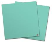 WraptorSkinz Vinyl Craft Cutter Designer 12x12 Sheets Solids Collection Seafoam Green - 2 Pack