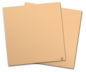 WraptorSkinz Vinyl Craft Cutter Designer 12x12 Sheets Solids Collection Peach - 2 Pack