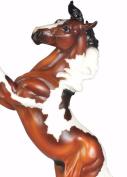 Breyer Santana Bay Pinto Mustang Exclusive TSC Spirit of the Horse