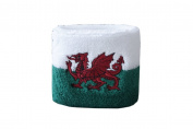 Digni® Wales Wristband / sweatband + free Digni® sticker
