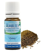 Farmed - Celery Seed (Apium graveolens) Therapuetic Grade Essential Oil By Amrita Amroatherapy - SIZE