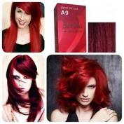 Pack of 1 Set Berina Garnet Red Hair Dye A9 Hair Colour Cream Dye 60G Super Permanent Fashion Unisex