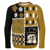 NCAA Busy Block Sweater