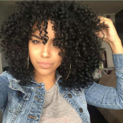 I's® Synthetic Afro Curly Hair Wigs for Black Woman Short Kinky Hair Jet Black Heat Resistance Fibre 36cm 200g