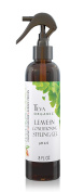 Teva Organic Leave-In Conditioner & Light Hold Styling Gel | Silicone Free