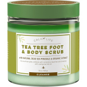 CalilyLife Organic Anti Fungal Tea Tree Body and Foot Scrub with Dead Sea Minerals, 710ml – Exfoliating, Powerful Cleansing and Moisturising - Helps Against Acne, Warts, Jock Itch, Cellulite, etc.