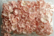 SOFT PINK 100 Mulberry paper 2 layer Flower Wedding Scrapbooking 2 cm