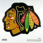 NHL Magnet, Logo