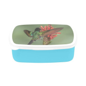 D-Story Hummingbird Children's Lunch Box Leakproof Bento Lunch Box Food Container