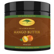 (470ml) Raw Mango Butter with RECIPE EBOOK - Perfect for All Your DIY Home Recipes like Soap Making, Lotion, Shampoo, Lip Balm and Hand Cream - Bulk Organic Unrefined Mango Butter is Great for Scars