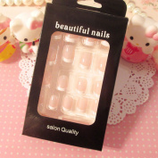 SNNplapla 24 Pcs Lady Women's French Style DIY Manicure Art Tips False Nails with Glue