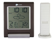 Wireless Weather Station with Temperature Sensor